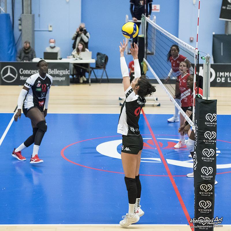 93-QuimperVolley29 - Volley-Ball Halluin