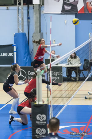 177-QuimperVolley29 - Volley-Ball Halluin
