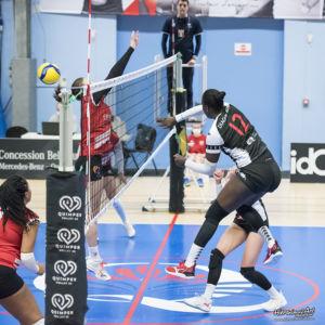 246-QuimperVolley29 - Volley-Ball Halluin