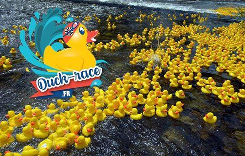 Duck Race : Faites commes nous adoptez un canard !